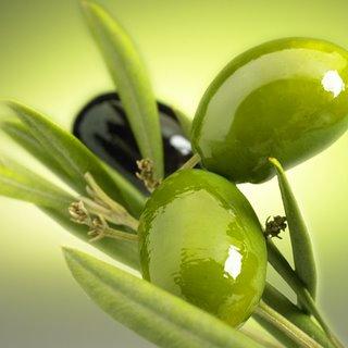 akdeniz-zeytini-faydalari