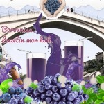 Borovnisa